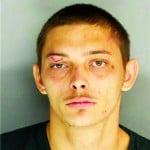 Phillip Boyd Jr, 23, of Warrenville, Burglary, receiving stolen goods, resisting arrest