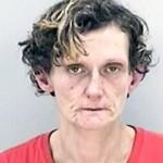 Lisa Vaughn, 41, of Augusta, Credit card fraud